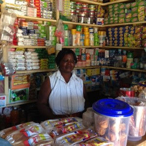 Atoosa and Her Grocery Store